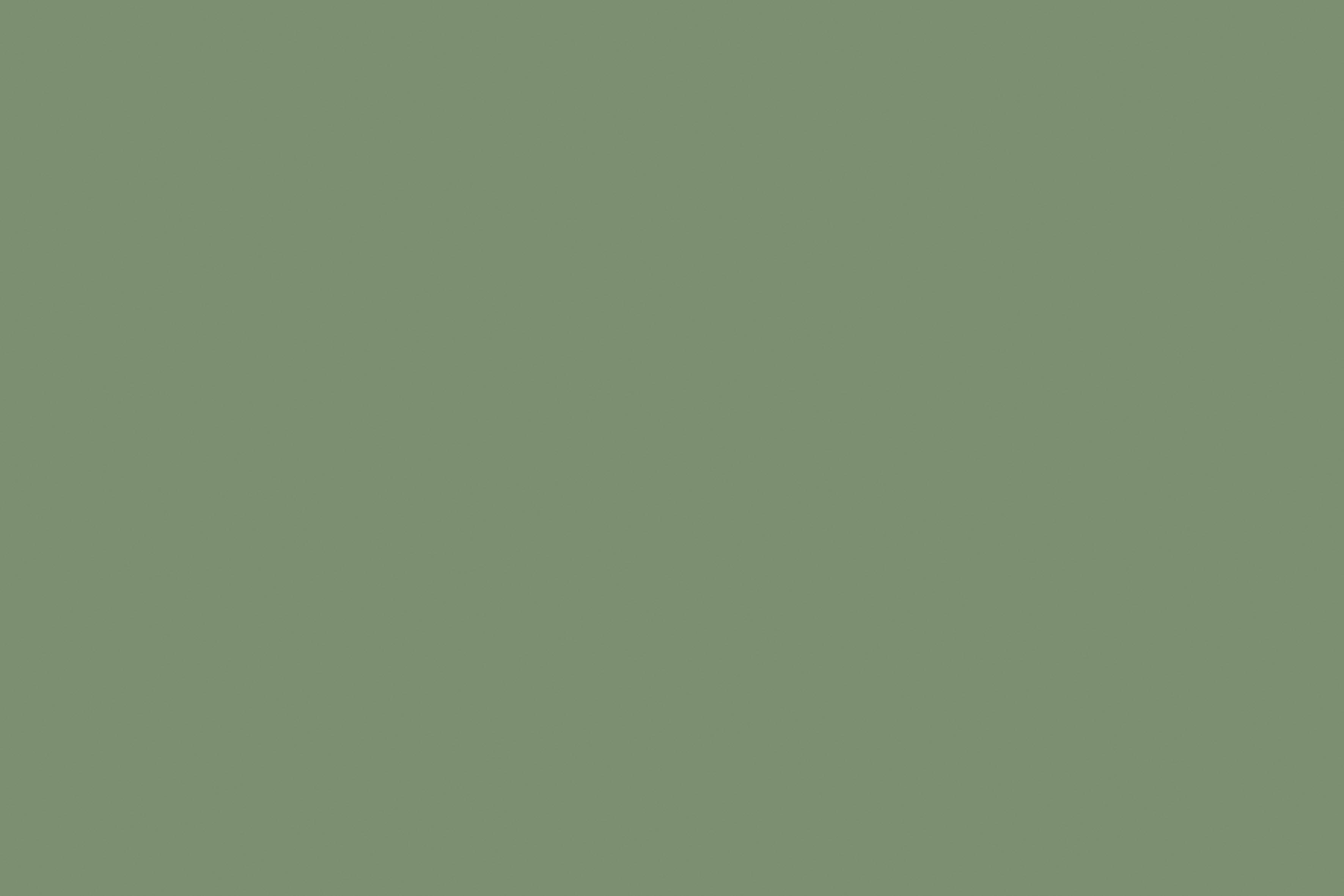 Verdesalvia